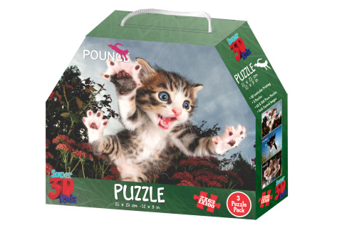 3D Puzzle Koťata 3v1