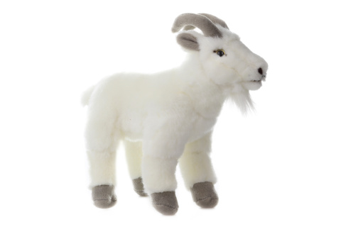 Plyš Koza