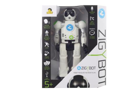 Robot Zigybot