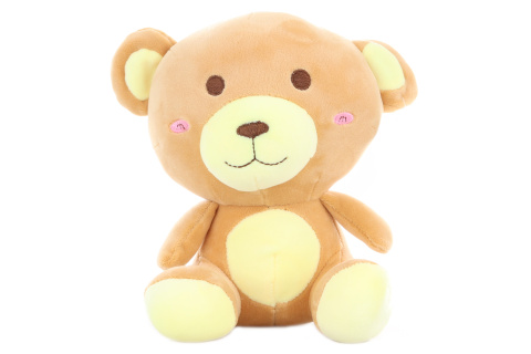 Plyš Medvěd 18 cm